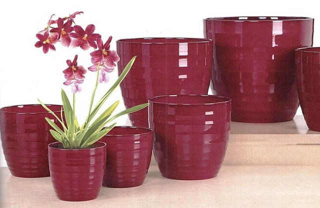 Vasi in vetro e ceramica vasi in vetro e ceramica - Vasi ceramica esterno ...